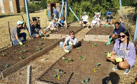 Environmental Science and Policy students work in the garden
