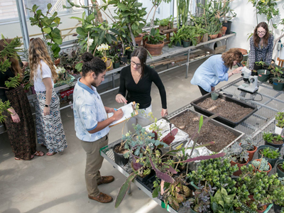Students study biology in the greenhouse at St. Edward's.