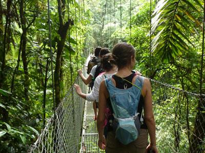 Students walk along a rainforest canopy bridge in Costa Rica
