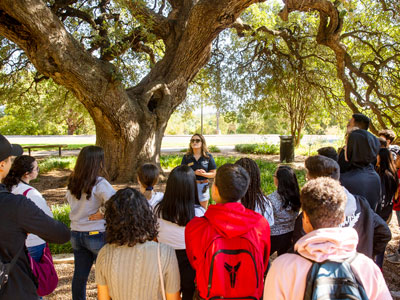 Group Tour at St. Edward's University