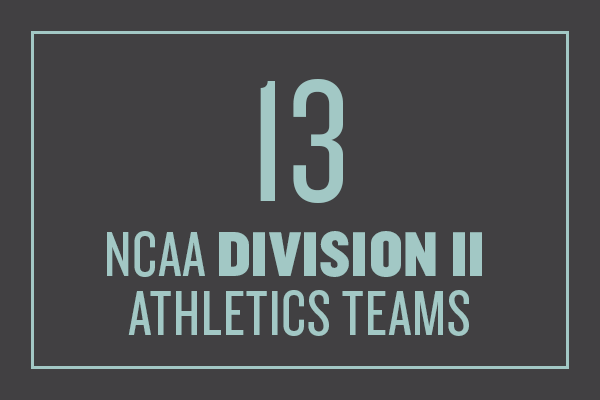 13 NCAA Division II athletics teams