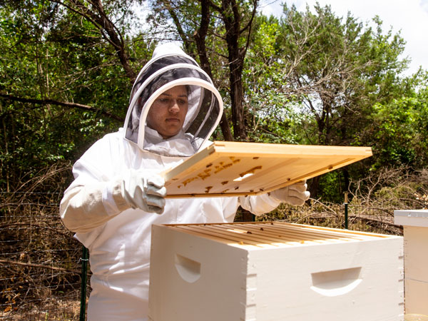 student with beehive