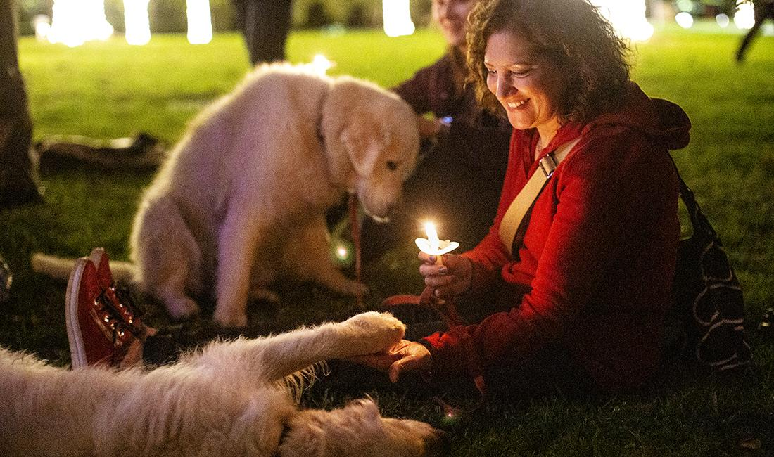 Dogs celebrate the festival of lights too!