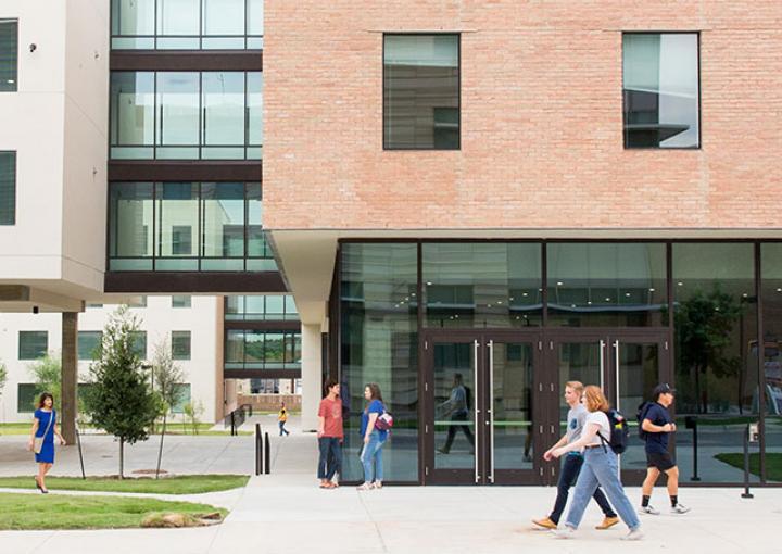 st edward s university