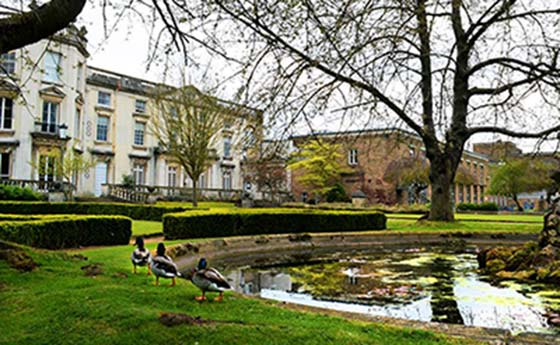 A tree and pond in front of a building at University of Roehampton, London, England