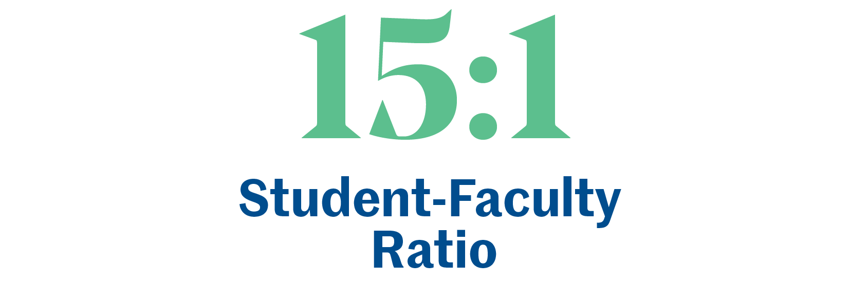 15:1 Student Faculty Ratio